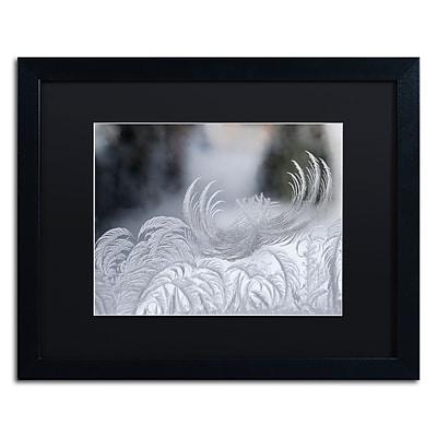Trademark Fine Art ''February Window Frost'' by Kurt Shaffer 16