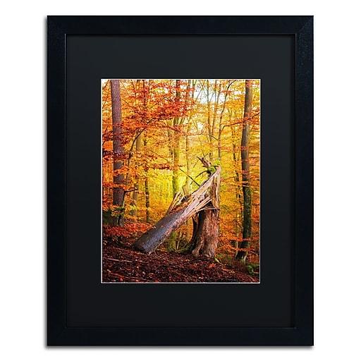 "Trademark Fine Art ''Broken Career'' by Philippe Sainte-Laudy 16"" x 20"" Black Matted Black Frame (886511796188)"