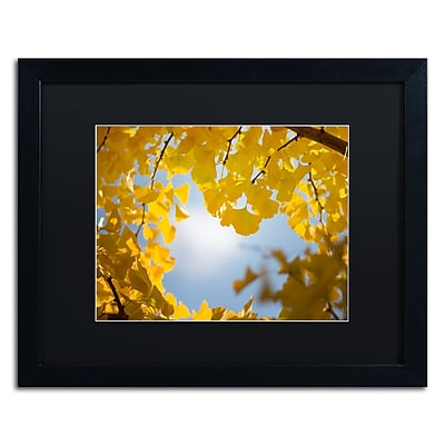 Trademark Fine Art ''Ginkgo Leaves in Autumn'' by Philippe Sainte-Laudy 16