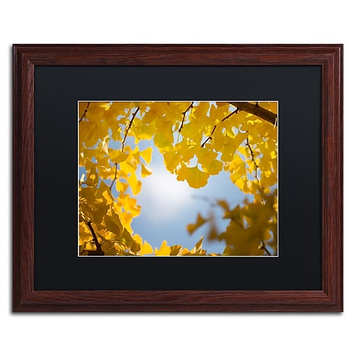 """Trademark Fine Art ''Ginkgo Leaves in Autumn'' by Philippe Sainte-Laudy 16"""" x 20"""" Black Matted Wood Frame (886511797154)"""