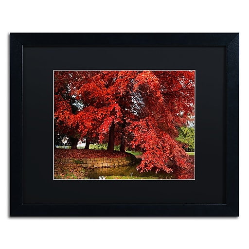 """Trademark Fine Art ''October'' by Philippe Sainte-Laudy 16"""" x 20"""" Black Matted Black Frame (886511797987)"""