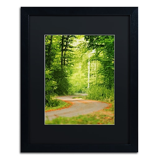 """Trademark Fine Art ''S Road'' by Philippe Sainte-Laudy 16"""" x 20"""" Black Matted Black Frame (886511798588)"""