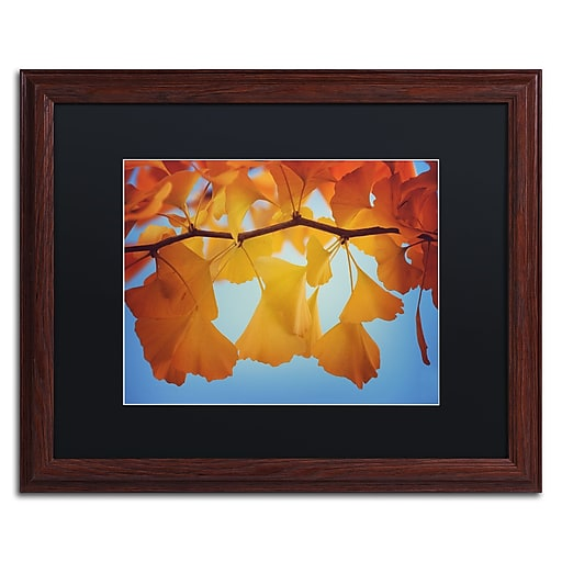 "Trademark Fine Art ''Spiritual Food'' by Philippe Sainte-Laudy 16"" x 20"" Black Matted Wood Frame (886511798953)"