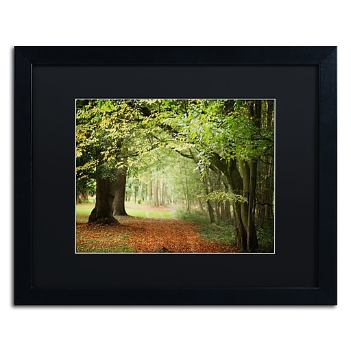 """Trademark Fine Art ''Through the Woods'' by Philippe Sainte-Laudy 16"""" x 20"""" Black Matted Black Frame (886511799486)"""