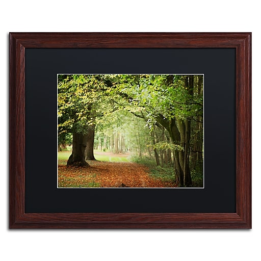 """Trademark Fine Art ''Through the Woods'' by Philippe Sainte-Laudy 16"""" x 20"""" Black Matted Wood Frame (886511799554)"""