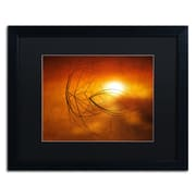 "Trademark Fine Art ''Touch of Last Light'' by Philippe Sainte-Laudy 16"" x 20"" Black Matted Black Frame (886511799585)"