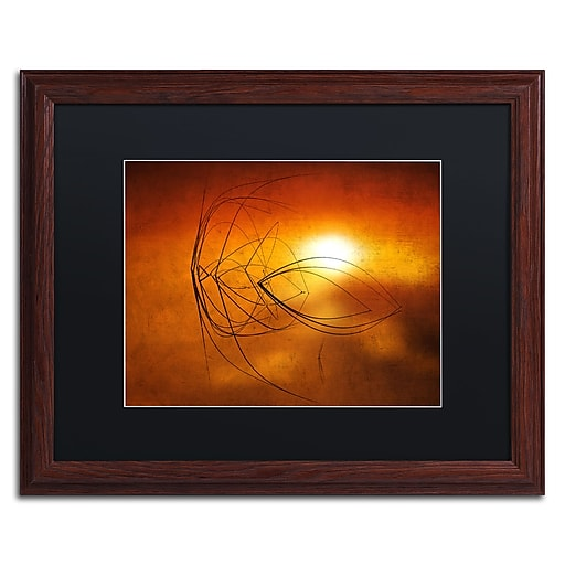 """Trademark Fine Art ''Touch of Last Light'' by Philippe Sainte-Laudy 16"""" x 20"""" Black Matted Wood Frame (886511799653)"""