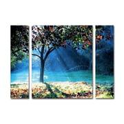 "Trademark Fine Art ''Rays of Hope'' by Beata Czyzowska Young 30"" x 41"" Multi Panel Art Set Large (886511916395)"