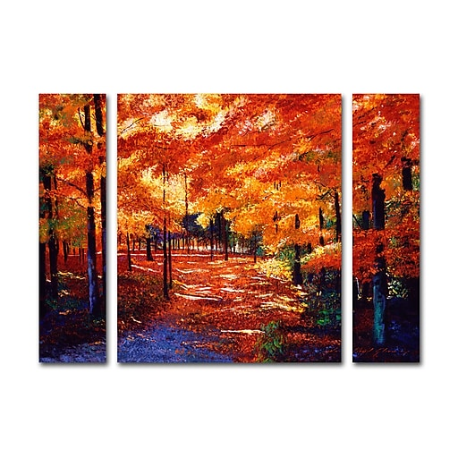 "Trademark Fine Art ''Magical Forest'' by David Lloyd Glover 24"" x 32"" Multi Panel Art Set Small (886511916579)"