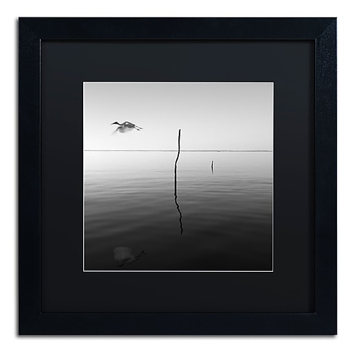 """Trademark Fine Art ''Fly'' by Moises Levy 16"""" x 16"""" Black Matted Black Frame (886511873971)"""