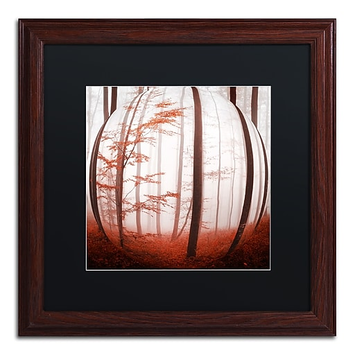 """Trademark Fine Art ''Autumn to Burn'' by Philippe Sainte-Laudy 16"""" x 16"""" Black Matted Wood Frame (886511795952)"""