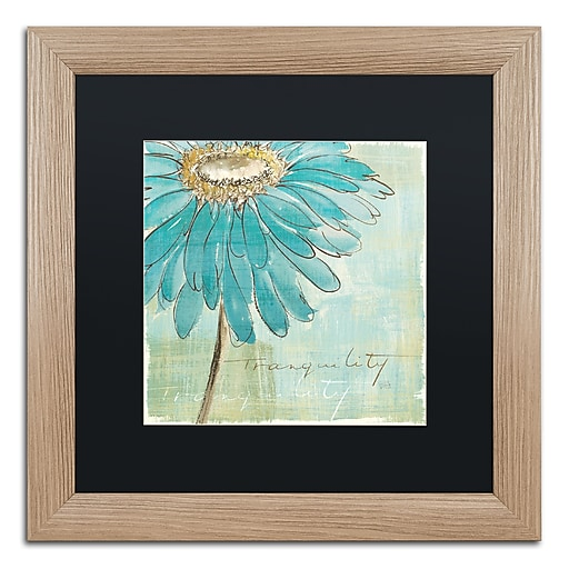 "Trademark Fine Art ''Spa Daisies III'' by Chris Paschke 16"" x 16"" Black Matted Wood Frame (886511859845)"
