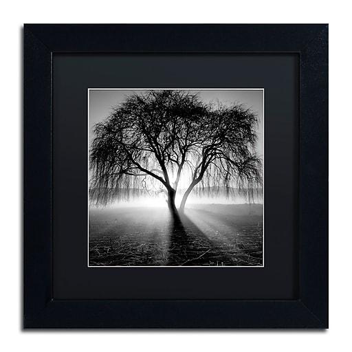 """Trademark Fine Art ''Lightning Tree I'' by Moises Levy 11"""" x 11"""" Black Matted Black Frame (886511871274)"""