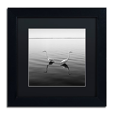 Trademark Fine Art ''2 Herons'' by Moises Levy 11