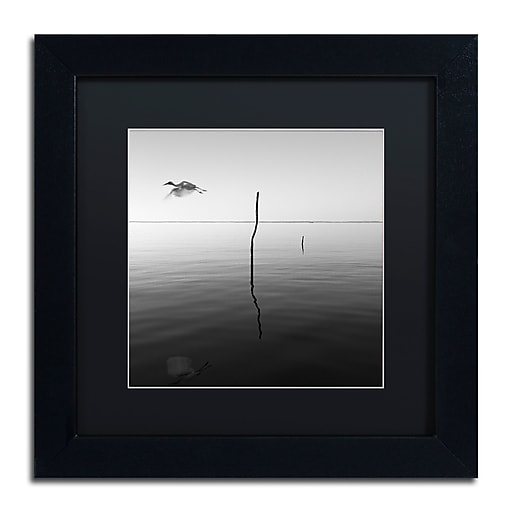 """Trademark Fine Art ''Fly'' by Moises Levy 11"""" x 11"""" Black Matted Black Frame (886511873957)"""