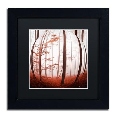 Trademark Fine Art ''Autumn to Burn'' by Philippe Sainte-Laudy 11
