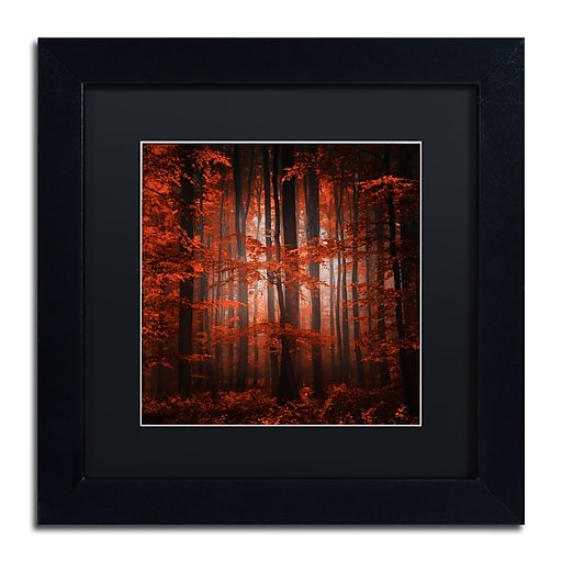 """Trademark Fine Art ''Red Parallel Universe'' by Philippe Sainte-Laudy 11"""" x 11"""" Black Matted Black Frame (886511798267)"""