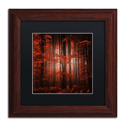 """Trademark Fine Art ''Red Parallel Universe'' by Philippe Sainte-Laudy 11"""" x 11"""" Black Matted Wood Frame (886511798342)"""