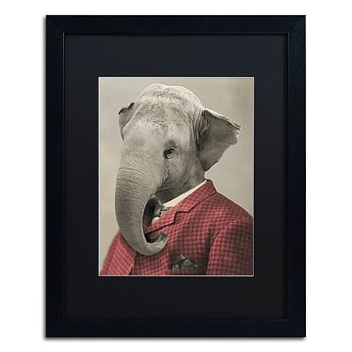 "Trademark Fine Art ''Wild Animals #1'' by J Hovenstine Studios 16"" x 20"" Black Matted Black Frame (886511914902)"