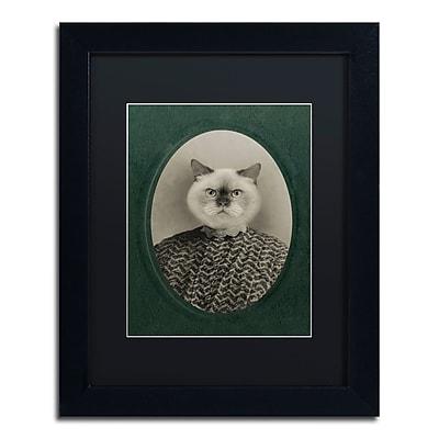 Trademark Fine Art ''Cat Series #1'' by J Hovenstine Studios 11