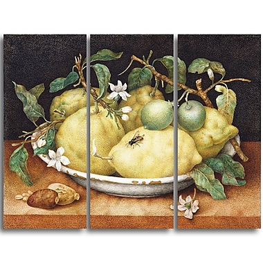 Designart Giovanna Garzoni, Still Life with Bowl of Lemons Canvas Art Print, 4 Panels, (PT4444-3P)