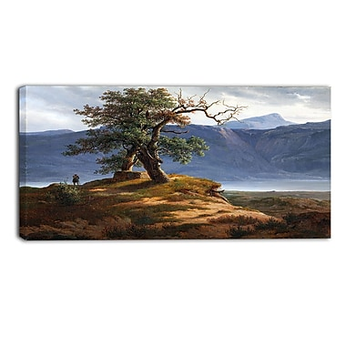 Designart Thomas Fearnley, Landscape with Wanderer Canvas Art Print, (PT4946-40-20)