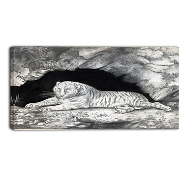 Designart Elizabeth Pringle, A Tiger Lying in a Cave Landscape Canvas Art Print, (PT4356-40-20)