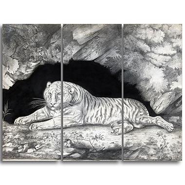 Designart – Imprimé sur toile, paysage, Un tigre allongé dans une grotte, Elizabeth Pringle (PT4356-3P)
