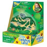 Ladybug Land™