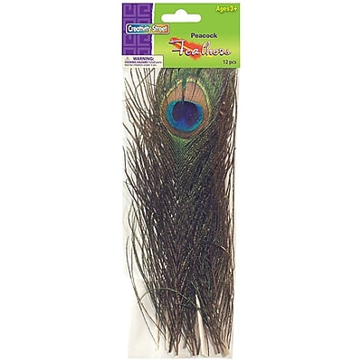 Chenille Craft® Peacock Feathers, 12 Pieces