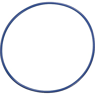 Champion Sports® Plastic Hoop,24