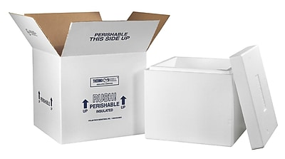 16.75 (L) x 16.75 (W) x 15 (H) Insulated Shipping Containers, White, Each (249C)