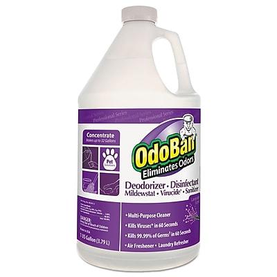 OdoBan® Professional Series Deodorizer Disinfectant, 1gal Bottle, Lavender Scent, 4/ct