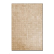 Natural Rugs Barcelona Cowhide Natural Area Rug