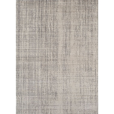 Rugs America Asteria Phoebe Champagne Ivory/Gray Area Rug; 2' x 3'