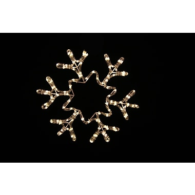Queens of Christmas 19'' Rope Lit Snowflake w/ Star; Warm White