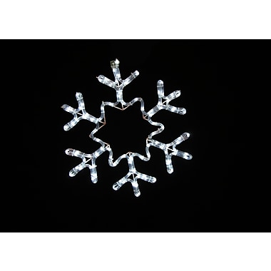 Queens of Christmas 19'' Rope Lit Snowflake w/ Star; Pure White