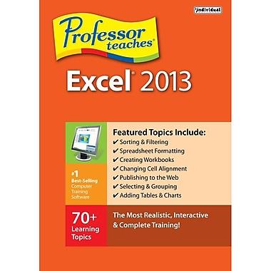 Professor Teaches Excel 2013 [Téléchargement]