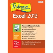 Professor Teaches Excel 2013 [Download]