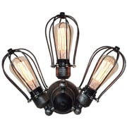 Westmen Lights Transformable Arm Squirrel Cage 3-Light Semi Flush Mount