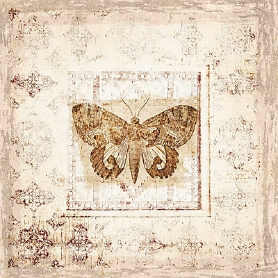 Marmont Hill 'Antique Butterfly I' by Irena Orlov Painting Print on Wrapped Canvas; 48'' H x 48'' W