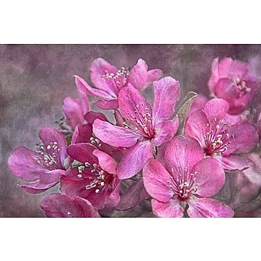 Marmont Hill 'Crabapple Floral' by Theo Painting Print on Wrapped Canvas; 30'' H x 45'' W