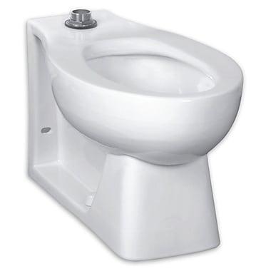 American Standard Universal Huron Everclean Dual Flush Elongated Toilet Bowl