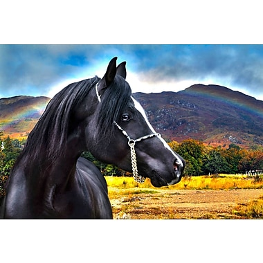 Marmont Hill 'Rainbow' by Maggie Dee Painting Print on Wrapped Canvas; 30'' H x 45'' W