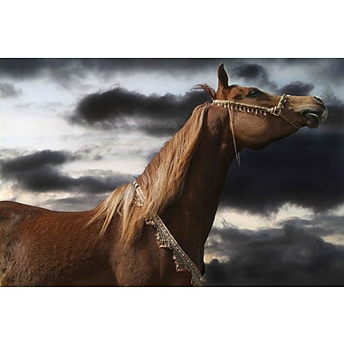 Marmont Hill 'Rehannah' by Maggie Dee Painting Print on Wrapped Canvas; 24'' H x 36'' W