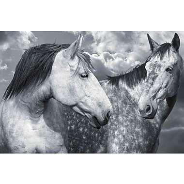 Marmont Hill 'Are We Buds' by Maggie Dee Painting Print on Wrapped Canvas; 12'' H x 18'' W