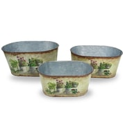 National Tree Co. 3 Piece Rustic Tin Pot Set