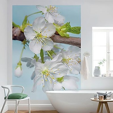 Brewster Home Fashions Komar Blossom Wall Mural