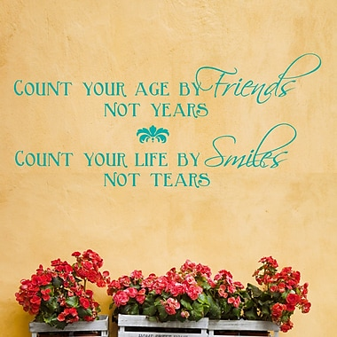 DecaltheWalls Count Your Age by Friends Wall Decal; Mint