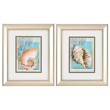Propac Images Nautilus Turban 2 Piece Framed Graphic Art Set
